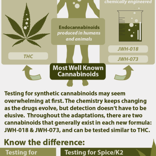 Detecting Synthetic Cannabinoids